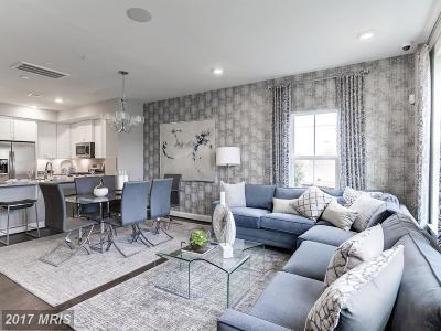 Hyattsville Single Family Home For Sale: 3205 Tribune Court #E
