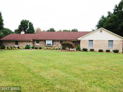 Fort Washington Single Family Home For Sale: 10938 Riverview Road