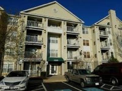 Upper Marlboro Rental For Rent: 14200 Farnsworth Lane #306