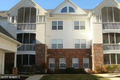 Greenbelt Rental For Rent: 6522 Lake Park Drive #202