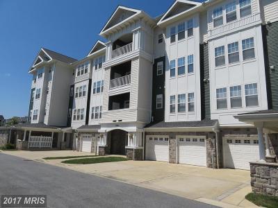 Laurel Rental For Rent: 13901 Belle Chasse Boulevard #113