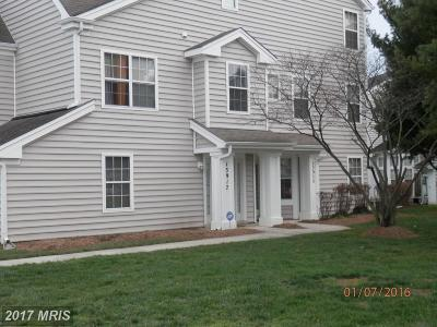 Upper Marlboro Rental For Rent: 13917 King Gregory Way #402
