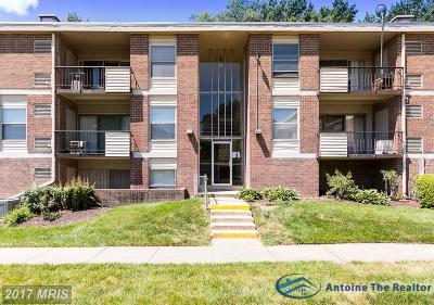 Suitland Rental For Rent: 3827 St Barnabas Road #102