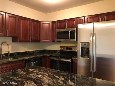 Upper Marlboro Rental For Rent: 10108 Campus Way #102-3C