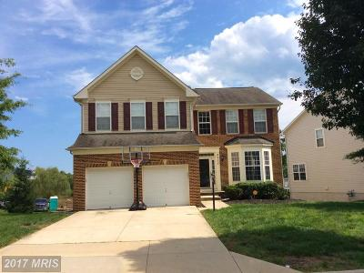 Prince Georges Single Family Home For Sale: 4217 Quanders Promise Drive