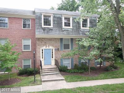 College Park Rental For Rent: 5966 Westchester Park Drive #302