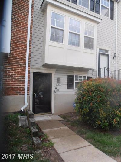 Suitland Rental For Rent: 4109 Applegate Court #5