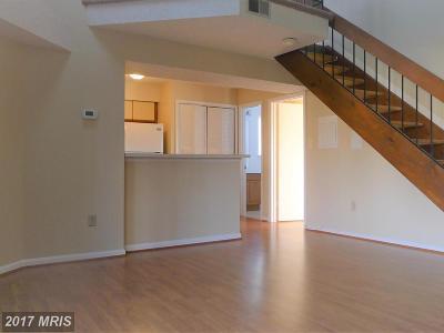 Laurel Rental For Rent: 14102 William Street #20-C