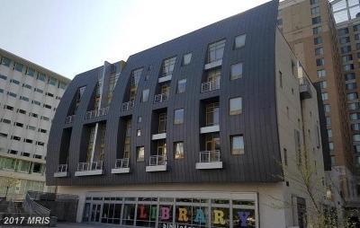 Hyattsville Rental For Rent: 6500 America Boulevard #402