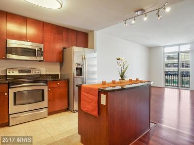 Oxon Hill Condo For Sale: 155 Potomac Passage #434