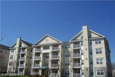 Upper Marlboro Rental For Rent: 13900 Farnsworth Lane #4407