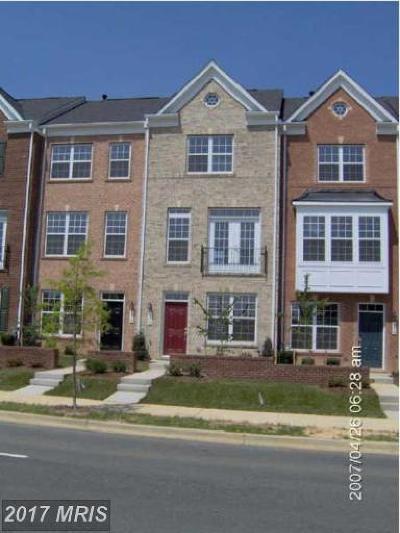 Hyattsville Rental For Rent: 522 Garrett A Morgan Boulevard