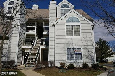 Laurel Rental For Rent: 14026 Vista Drive #84