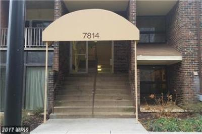 Greenbelt Condo For Sale: 7814 Hanover Parkway #368