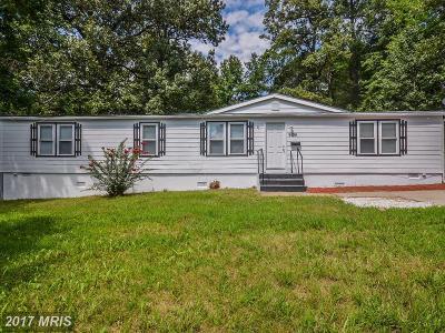Lanham Single Family Home For Sale: 9104 Good Luck Road