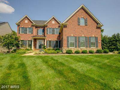 Accokeek, Clinton, Fort Washington, Upper Marlboro Single Family Home For Sale: 724 Ardonia Terrace