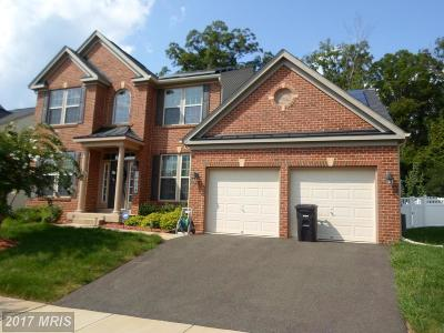 Accokeek Single Family Home For Sale: 14008 Vintage Lane