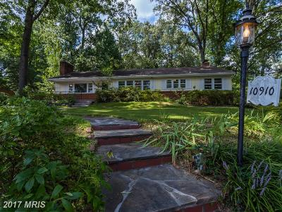 Adelphi Single Family Home For Sale: 10910 Bornedale Drive