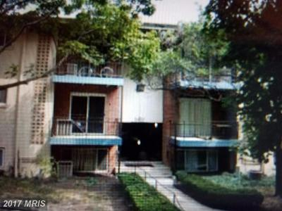 Beltsville Condo For Sale: 11380 Cherry Hill Road #102