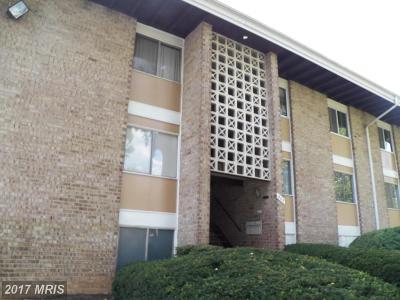 Oxon Hill Single Family Home For Sale: 507 Wilson Bridge Drive #APT 2C