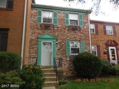 Temple Hills Rental For Rent: 6513 Beechwood Drive #29
