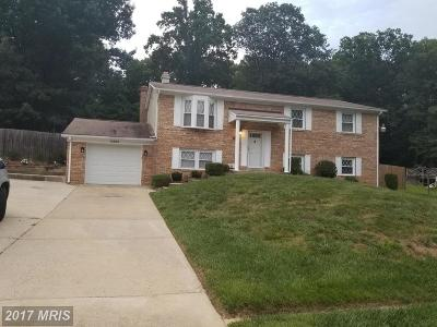 Temple Hills Single Family Home For Sale: 6802 Birch Lane