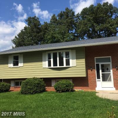 Beltsville Rental For Rent: 4518 Broad Boulevard