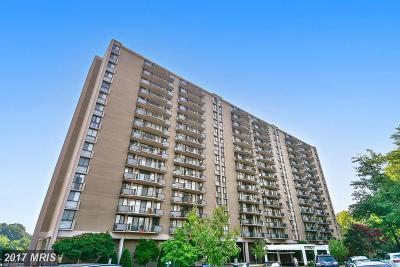 College Park Rental For Rent: 6100 Westchester Park Drive #T-4
