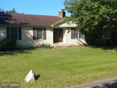 Temple Hills Rental For Rent: 6919 Taylor Manor Avenue