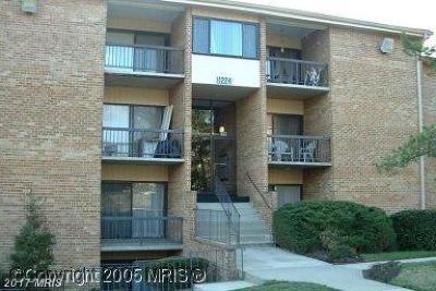 Beltsville Condo For Sale: 11224 Cherry Hill Road #279
