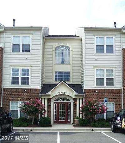 College Park Rental For Rent: 6212 Westchester Park Drive #L