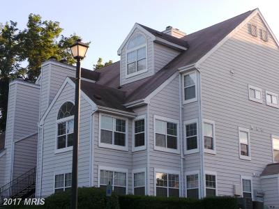 Bowie Rental For Rent: 15693 Easthaven Court #1211