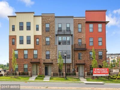 Hyattsville Townhouse For Sale: 3201 Tribune Court #G
