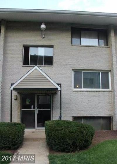 New Carrollton Condo For Sale: 5420 85th Avenue #102