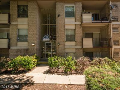 Suitland Condo For Sale: 3833 St Barnabas Road #T-101
