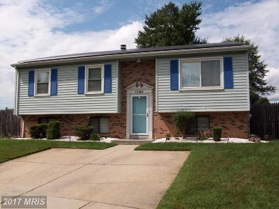 Beltsville Single Family Home For Sale: 11301 Pitsea Drive