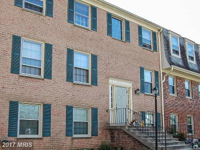 College Park Rental For Rent: 6034 Westchester Park Drive #301