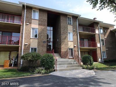 College Park Rental For Rent: 4707 Tecumseh Street #204