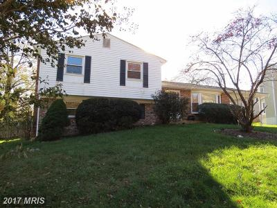 Beltsville Single Family Home For Sale: 4201 Ulster Road