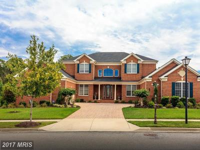 Upper Marlboro Single Family Home For Sale: 4606 Palomino Crossing