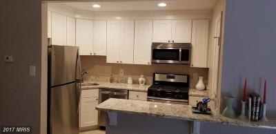 Temple Hills Rental For Rent: 3138 Brinkley Road #T-3