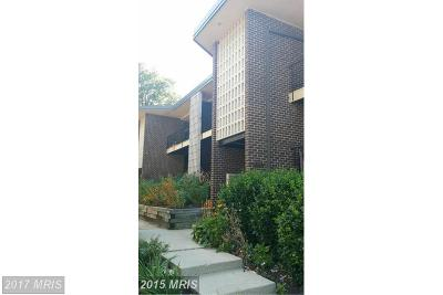Suitland Rental For Rent: 3936 Stone Gate Drive #D