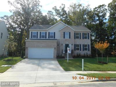 Capitol Heights Single Family Home For Sale: 5603 Rugged Lane