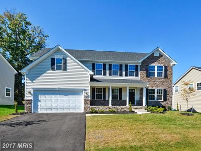 Upper Marlboro Single Family Home For Sale: 215 Bottsford Avenue