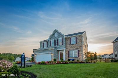 Accokeek Single Family Home For Sale: 14212 Hardy Tavern Drive
