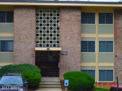 District Heights Rental For Rent: 7101 Donnell Place #D-7