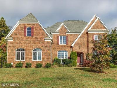 Bowie Single Family Home For Sale: 12804 Willow Marsh Lane