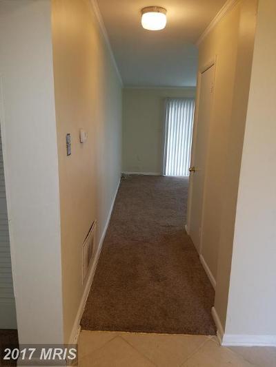 Laurel Rental For Rent: 11364 Laurelwalk Drive #B-45
