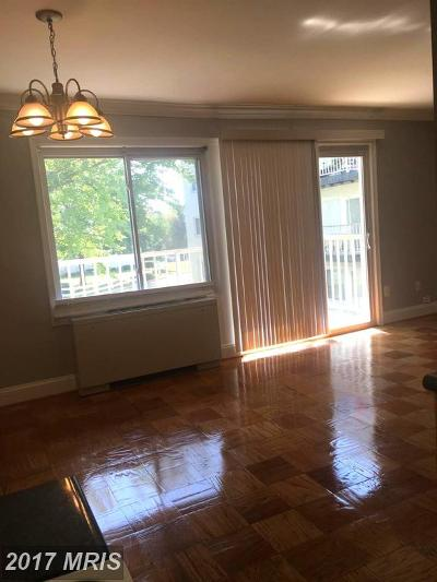 Hyattsville Rental For Rent: 1009 Chillum Rd #219