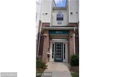 Upper Marlboro Rental For Rent: 8921 Town Center Circle #5-212